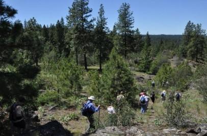 Dishman Hills Natural Area Spokane